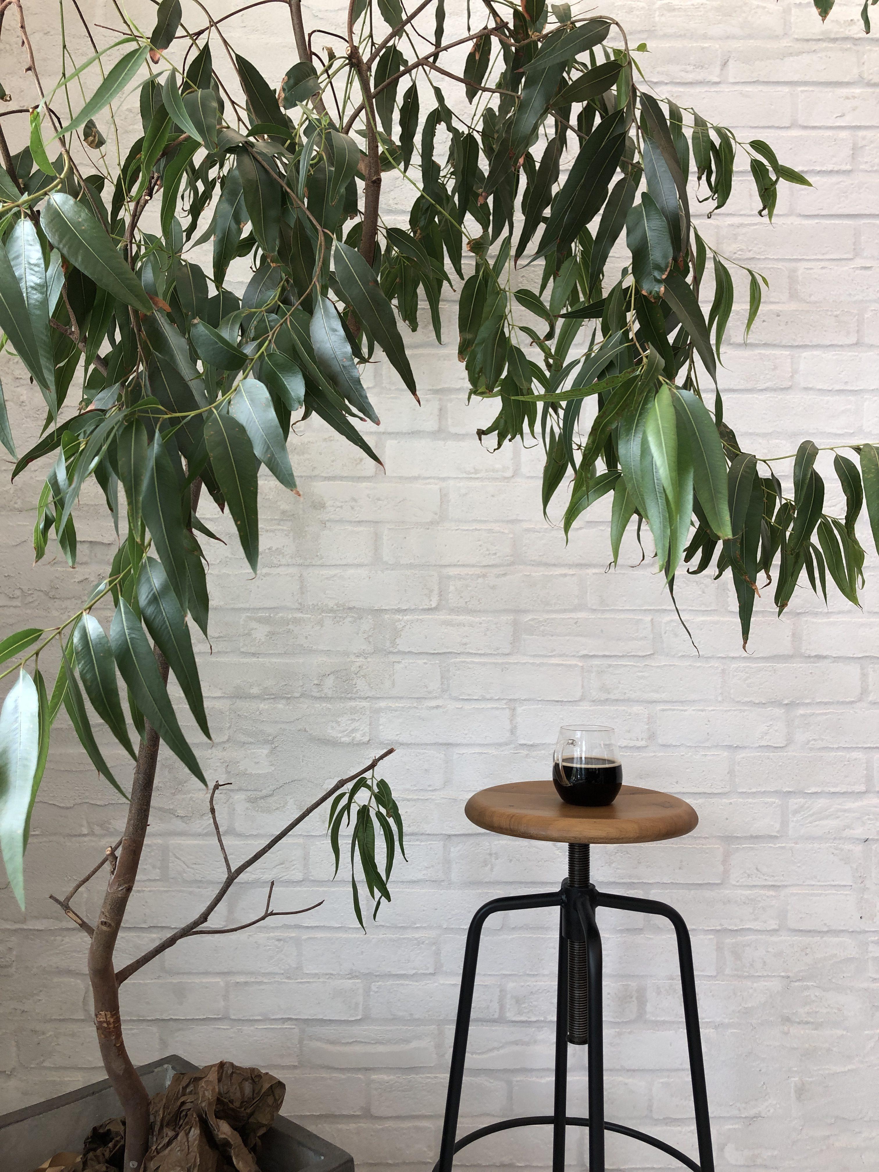 山梨県の工務店、未来建築工房とつくる注文住宅。|山中湖のカフェ