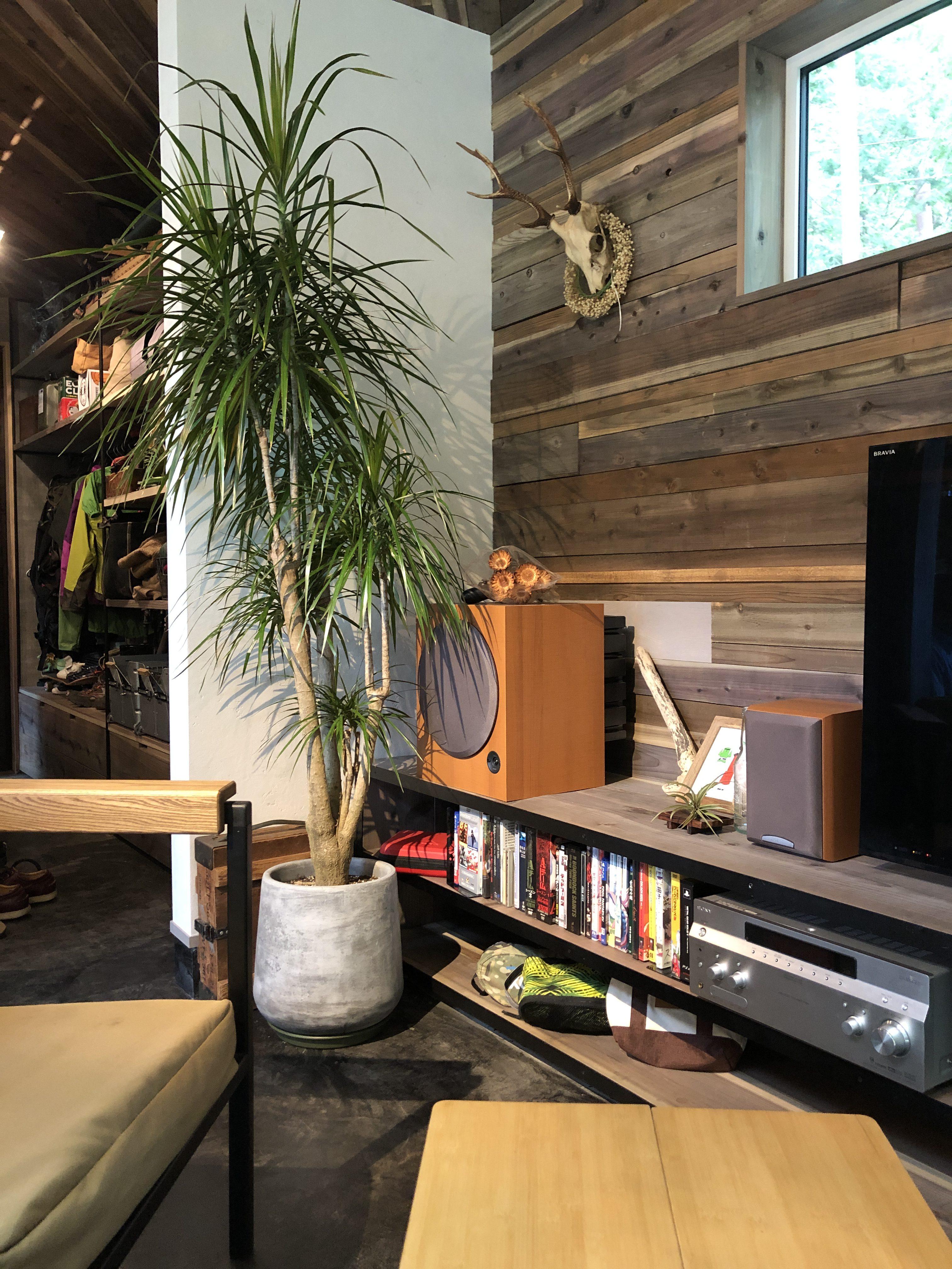 山梨県の工務店、未来建築工房とつくる注文住宅。 アウトドアスタイルの家で取材!